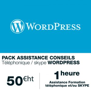 assistance-formation-wordpress-1h
